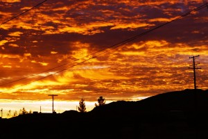 The sunrise from our back yard.  I love it when the sky appears to catch fire.